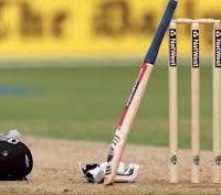 Cricket Image
